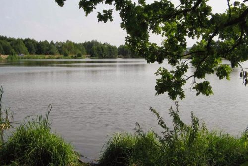 Шелубей озеро