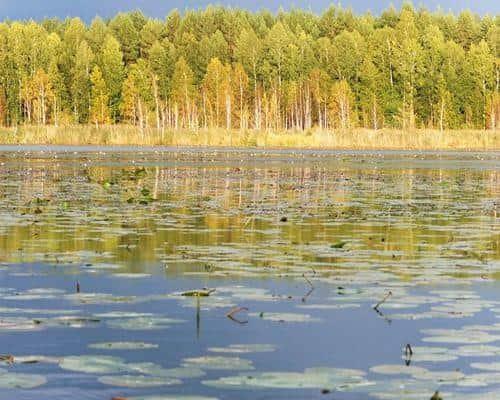 Становое озеро