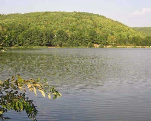 Светлое озеро (Республика Мордовия)