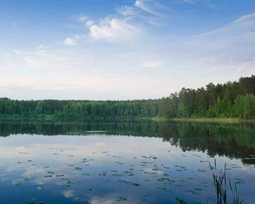 Светлое озеро (Чувашская Республика)