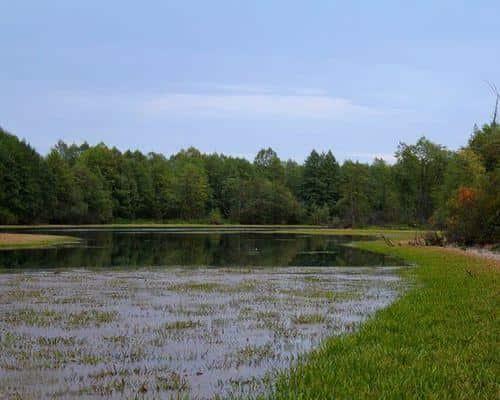 Татарка озеро
