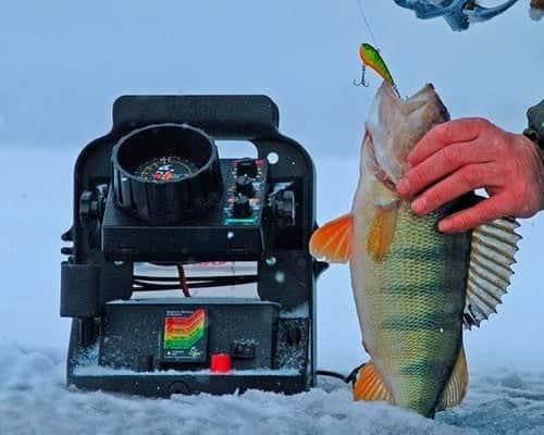 Выбор эхолота для зимней рыбалки