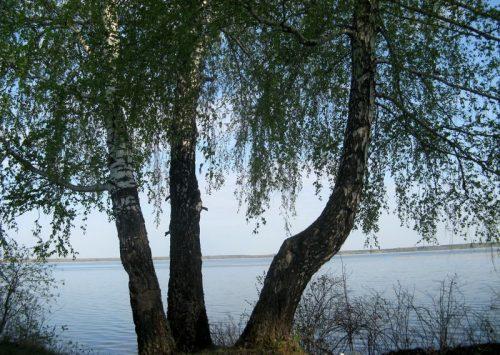 Куртугуз озеро