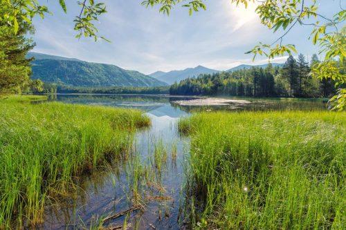 Алексеевское озеро