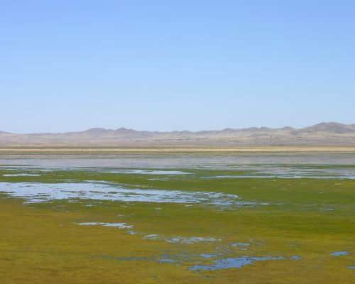Чедер озеро