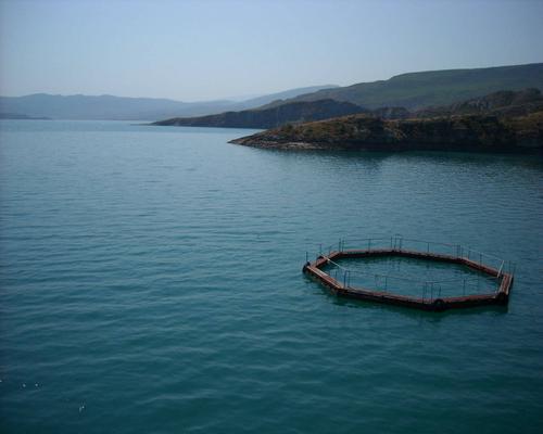 Чиркейское водохранилище