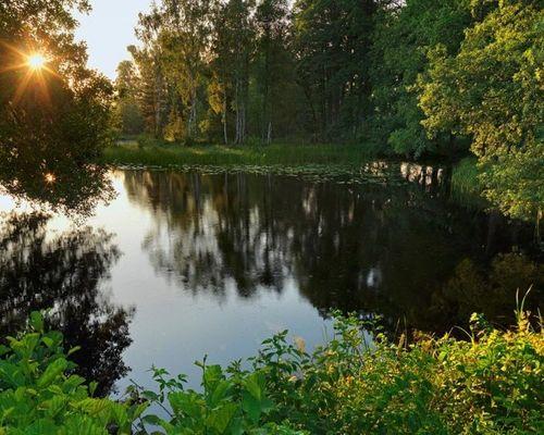 Добрецкое озеро