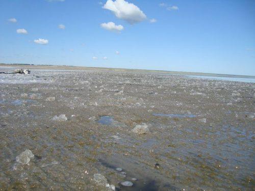 Эбейты озеро