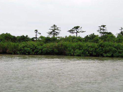Хвалисекое озеро