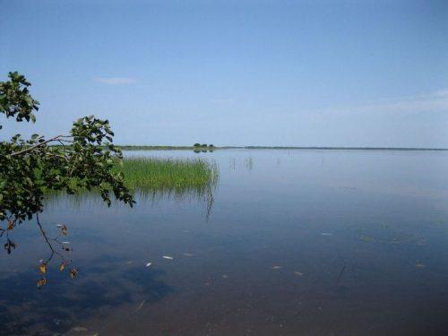 Невское озеро