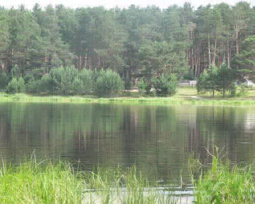 Песчаное озеро (Томская область)