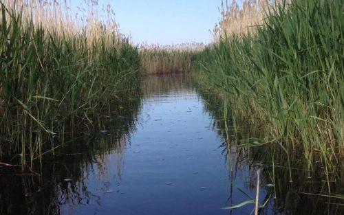 Салтаим озеро