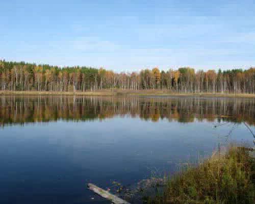 Шайтан-озеро (Томская область)