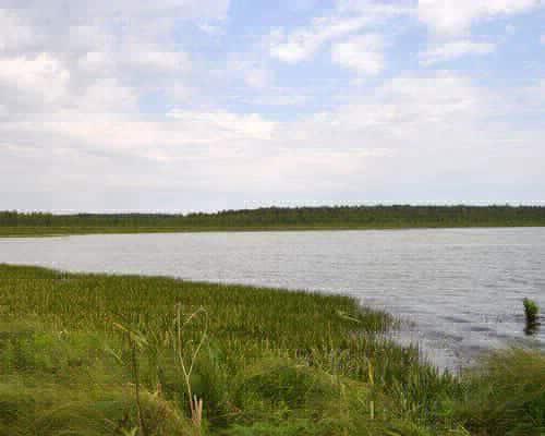 Шайтан-озеро (Омская область)