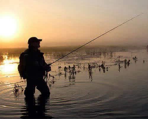 Джиг на мелководье — оснастка и техника ловли
