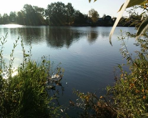 Тактика поиска хищника на водоёме: продолжение