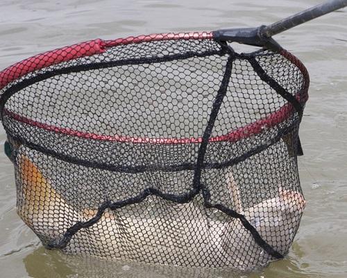 Маленькие насадки для большой рыбы