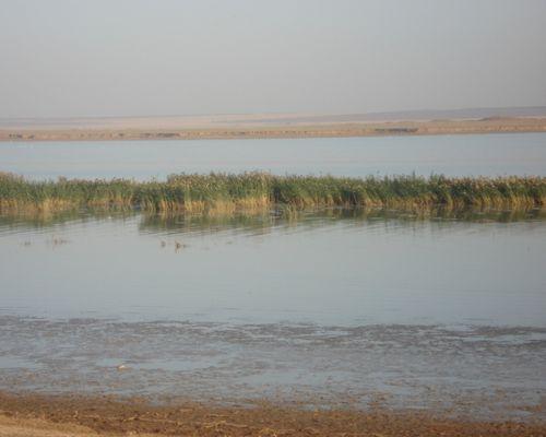 Лысый Лиман озеро