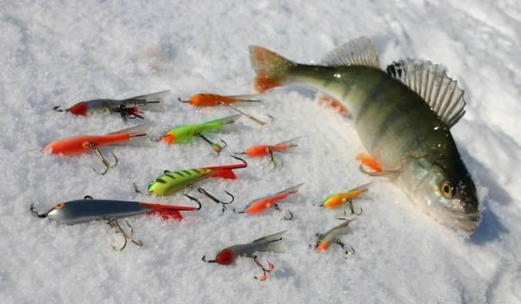 Как играть балансиром - читайте на Сatcher.fish