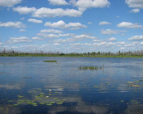 Батьковское озеро
