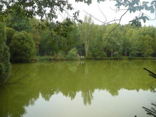 Безменковское озеро