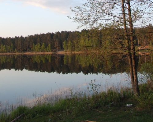 Чёрное озеро (Владимирская область)