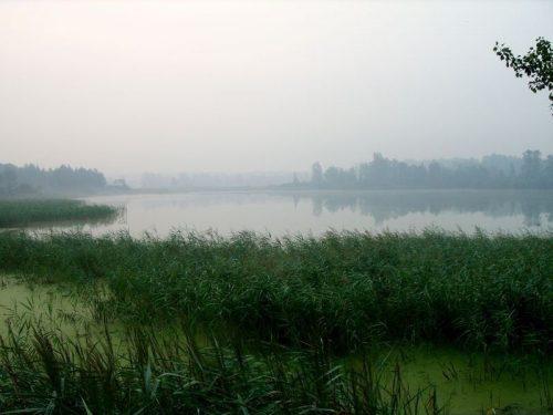 Дорогалевское озеро