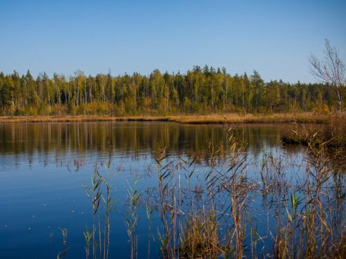 Горбатое озеро