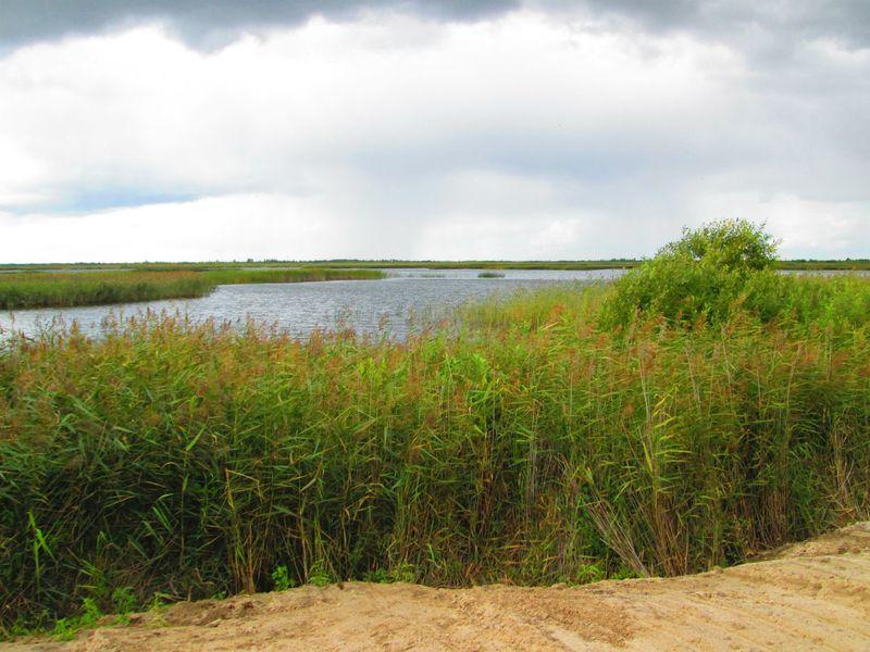 Озеро липовое тюмень рыбалка