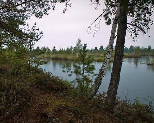 Маловское озеро