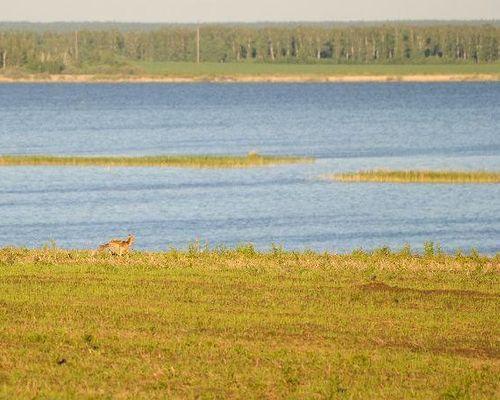 Мергень озеро