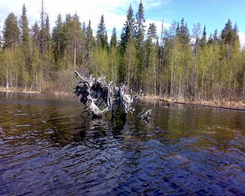 Озеро Нижнее Куйто