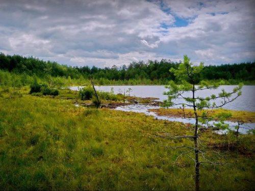 Плавучее озеро