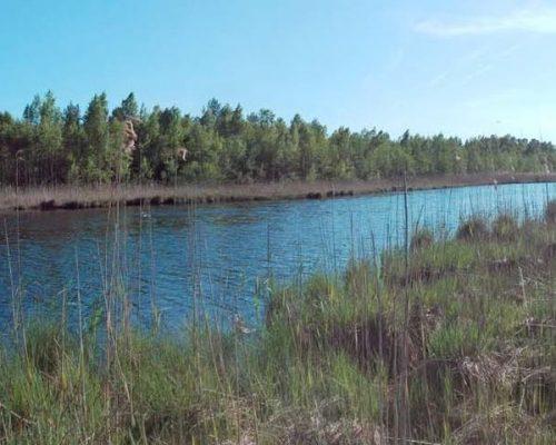 Пузиновское озеро