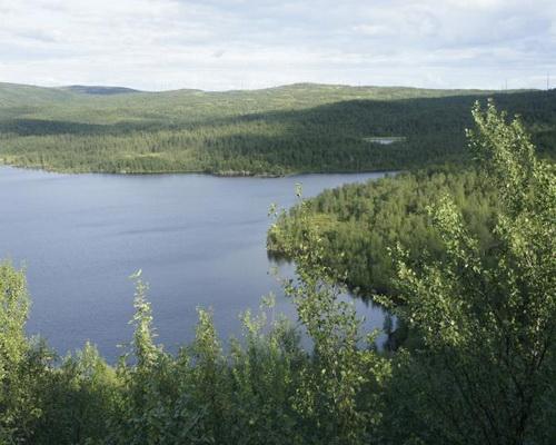 Рогозеро
