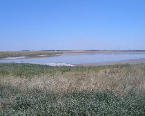 Солёное озеро (Ставропольский край)