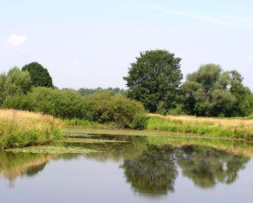 Старица озеро