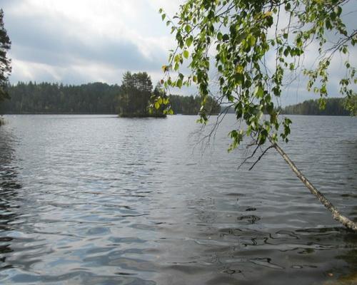 Святозеро (Карелия)