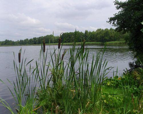 Тельминское озеро