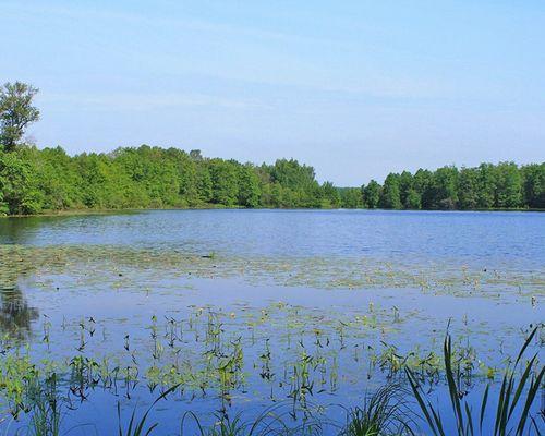 Тиновец озеро