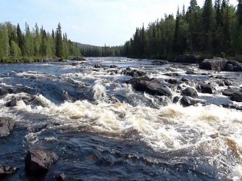 tuntsajoki