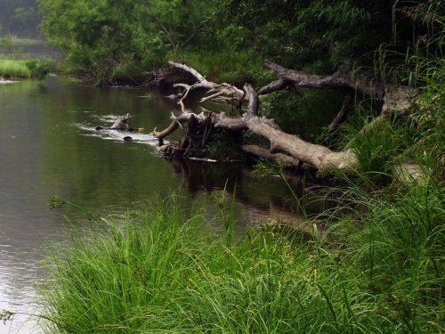 Рыбалка на реке урми хабаровского края