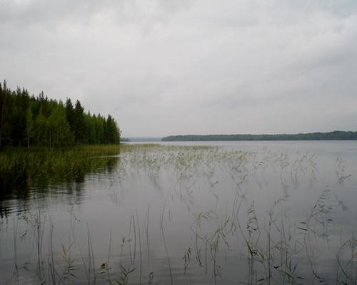 Верхнее Пигмозеро