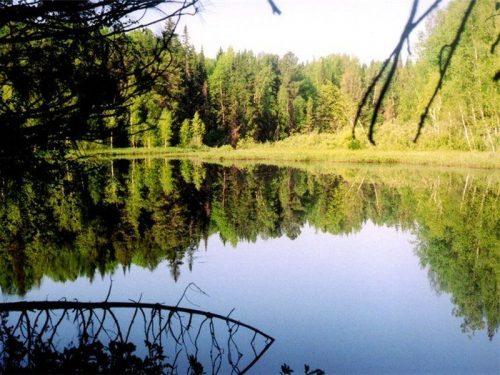 Витное озеро