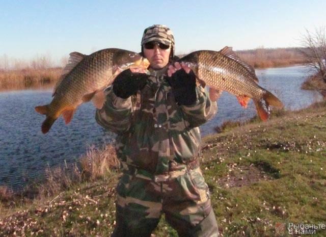 Джиговая ловля пассивной щуки - читайте на Сatcher.fish