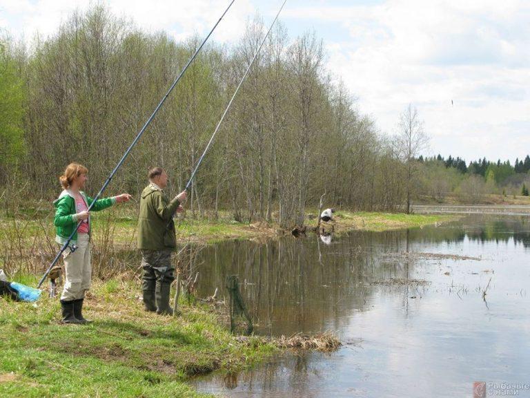 рыбалка ранней весной видеоролики все