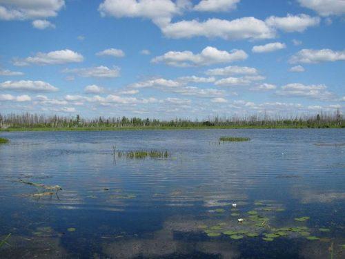 Заболотское озеро