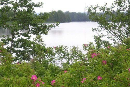 Запольское озеро