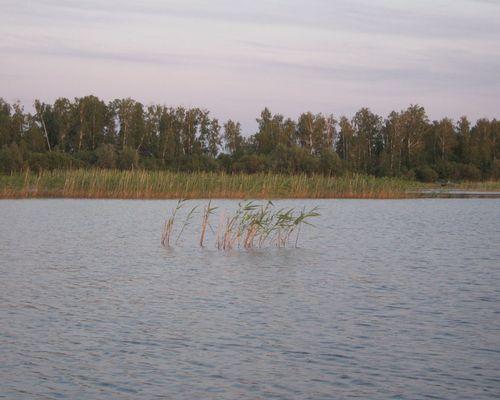 Ачликуль озеро