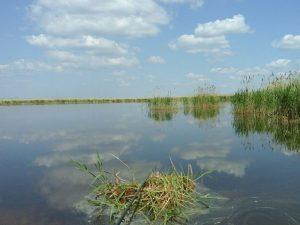 Аткуль озеро